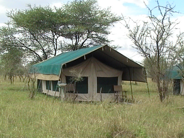tent in Serengeti